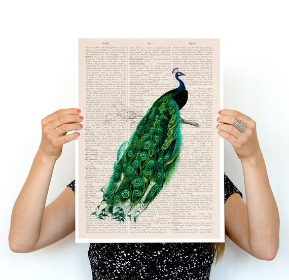 Elegant Peacock poster, Bird art, Eco friendly art, Wall art, Wall deccor, Giclee poster, Peacock art, Animal art, Wholesale,  ANI148PA3