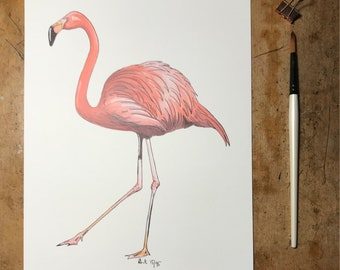 A4 Flamingo Print | Limited edition
