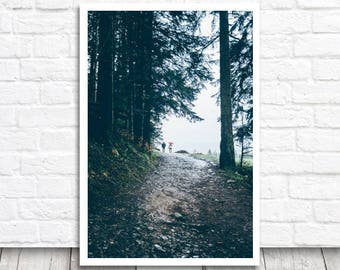 Rainy Day Print, Forest Print, Forest Photo Download, Printable Photo, Blue Forest Wall Art, Rainy Forest Home Decor, Digital Download