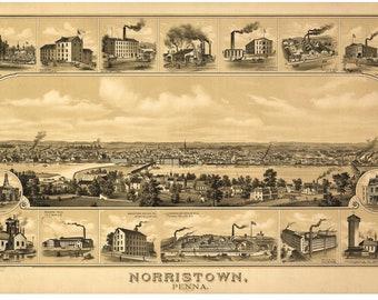 Norristown Pennsylvania -1881 - Birds Eye View Reprint