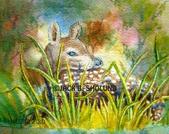 Whitetail Fawn Lying In Grass Animal Wildlife Watercolor Notecard