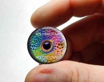 Glass Eyes - Rainbow Chameleon Glass Eyes Glass Taxidermy Eyeball Cabochons - Pair or Single - You Choose Size