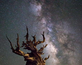The Ancients: Night sky & milky way metal print / photo print