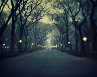 Poet's Walk, Central Park at Night, New York Photography Print, Fine Art Photography, New York City Print, Large Wall Art - Music of Chance