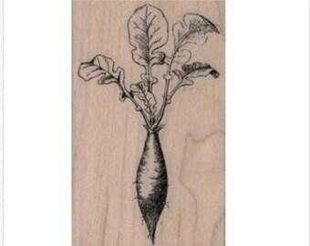 Radish  rubber stamp garden vegetable illustration stamps stamping no 20018