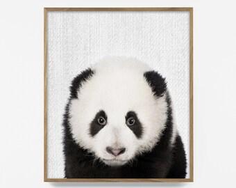 panda, zoo animal nursery art, printable, poster, modern minimalist nursery décor, baby animals, nursery prints, art, baby gift, 5x7, 8x10