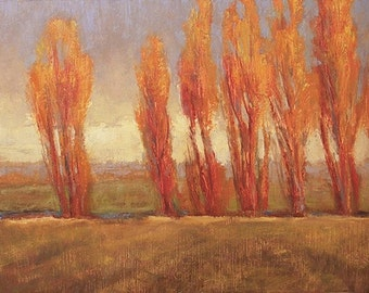 HEARTS  AS WARM as Poplar trees glowing orange in setting sunlight contrast with the dark sky to the east in this oil painting
