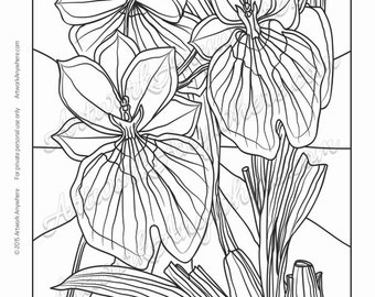 "Orchids on Glass ""Orchids in Full Bloom"" Adult coloring page printable download from Artwork Anywhere ~hand drawn stained glass look~"