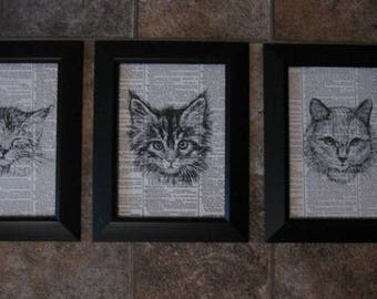 """Cat Drawings on Vintage Dictionary Page Prints - Set of 3 - 5"""" x 7"""" - #1"""