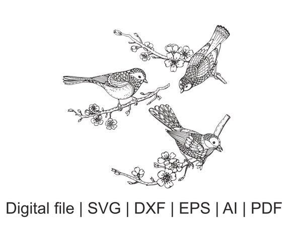 zentangle bird bird mandala mandala schablone zentangle