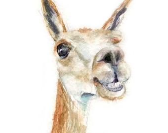 Watercolor Alpaca, Alpaca Print, Alpaca Art, Alpaca Painting, Alpaca Illustration, Alpaca Portrait