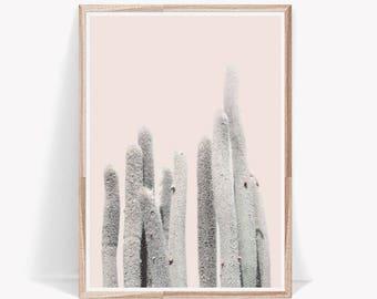 Cactus Print,Large Wall Art,Cactus,Art Prints,Wall Art,Digital Prints,Digital Download,Succulent Print,Nature Print,Desert Print,Wall Prints
