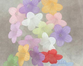 20 assorted frosted lucite flowers, bead cap, 25x10mm, #3