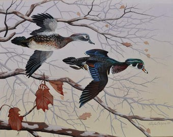 Wood Duck Original Painting by Doug Walpus, Ducks, Waterfowl, Bird painting, Gifts for Hunters, Home Decor, Office Decor, Wall Decor
