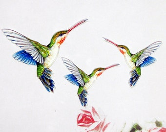 Hummingbird Embellishments Peacock