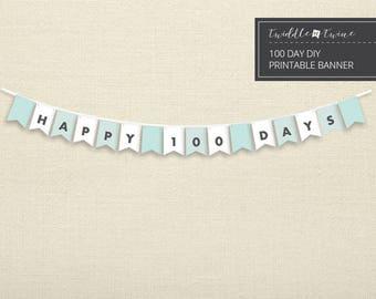 Aqua Gingham 100 Days Banner - DIY - DOWNLOADABLE PDF