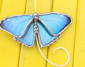 Real Blue Morpho Butterfly Silver Torc Necklace