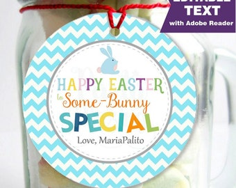Editable Printable Easter Tag , Party Favor Sticker, Cute Some-Bunny Special Tag, Round or Square Topper, Instant Download  -D864