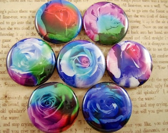 """Rose Magnets, Rose Cabochons, Rose Pins, Rainbow Rose Magnets, Rainbow Rose Pins, 1"""" Flat, Hollow BK, Cabs, 12 ct"""