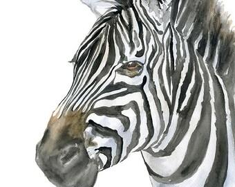 Zebra Watercolor Painting 4 x 6 - Giclee Print Reproduction - Nursery Art - Safari Painting African Animal
