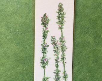 An Original, Laminated, Watercolor Bookmark, Thyme