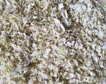 Dried Flower Petal Confetti | Ivory Cream White Biodegradable Delphinium Petals for Weddings