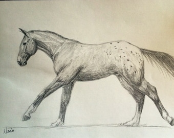 Orignial horse artwork Nicolae Art Nicole Smith artist graphite pencil sketch 8x10 Friesian running