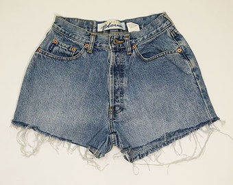 Express High Waisted Denim Shorts (size 5/6)- Upcycled by Rethreaded