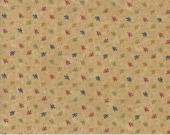 Gooseberry Lane Kansas Troubles Primitive Moda Cotton Quilt Fabric by the 1/2 yard  #9544 11