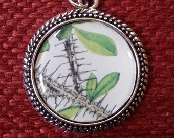 Crown of Thorns Bush Charm