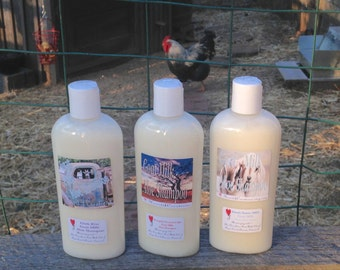 GOAT MILK ALOE Shampoo ~ You Choose the Scent