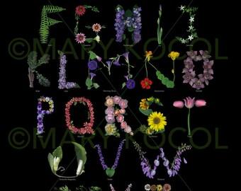 Garden Alphabet Poster