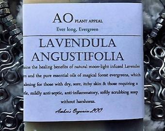 Organic Ever Long, Evergreen, Lavender Angustifolia Handcrafted Vegan Soap
