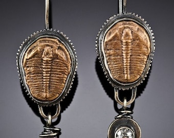 Sterling Silver and Bronze Trilobite Earrings