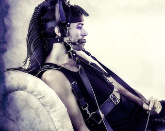 The Complete Pony Package: Jesse Harness, Tail and Long Mane in Faux Leather or Latex