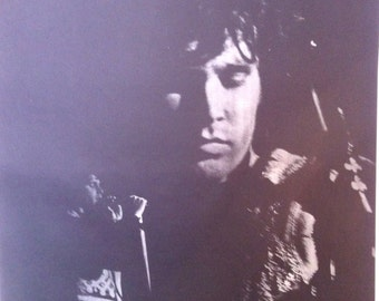 Jim Morrison The Doors Vintage 1968 Rock Poster Hippie era