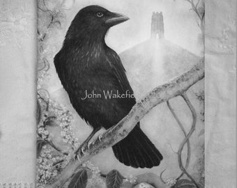 Crow and The Tor