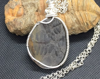 Plant fossil: Chunky wire wrapped natural fern fossil pendant, necklace, fossil jewelry