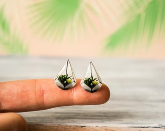 terrarium jewelry , botanical jewelry , succulent jewelry , mint succulent stud , plant earrings stud , nickel free earrings