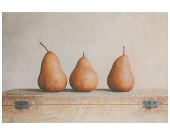 Pear Still Life, Food Photography, Fruit Print, Farmhouse Decor, Kitchen Photography Art, Modern Rustic Wall Art | 'Three Pears'