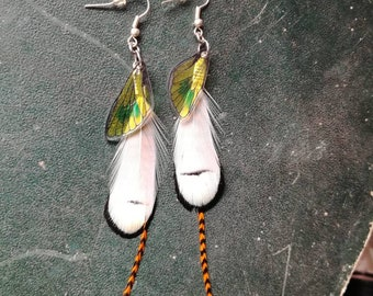 Feathers & cicada wings earrings