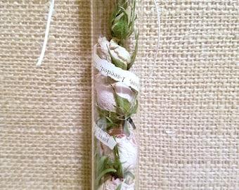 Captured Nature Botanical Filled Glass Test Tube Ornament Assemblage (3)