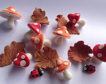 24 edible TOADSTOOL LEAF FAIRY beetle fall autumn icing cake decoration cupcake wedding topper decoration party wedding anniversary birthday