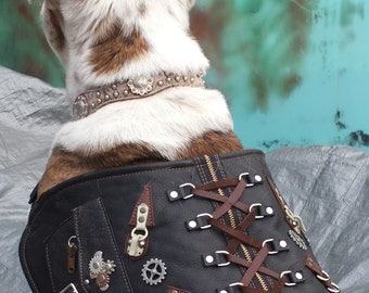 Steampunk Leather Dog Vest