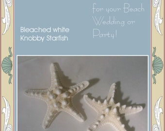 White Knobby Starfish - Lot of 50 for Weddings, Parties, Favors - 3-4 inch Starfish