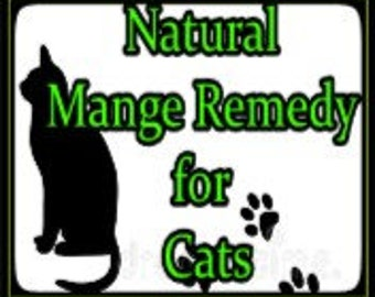 Cat's Mange Remedy
