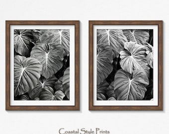 Tropical Print, Set Of 2 Prints, Black and White Photography, Print, Botanical Print, Wall Art, Posters, Prints, Leaf Print, Designer Art