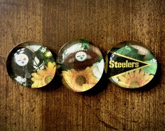 Steelers magnets