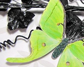 Butterfly Embellishments Luna Verde