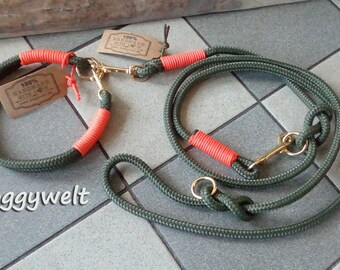 Combination rope leash & collar